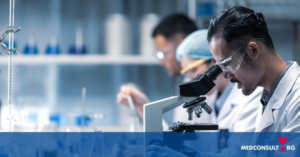 Откритие: нов протеин значително инхибира метастазите на рака
