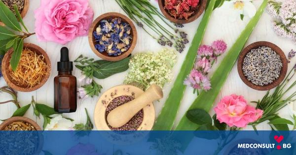 Лечебни ефекти на билките при зачеване или менструални болки
