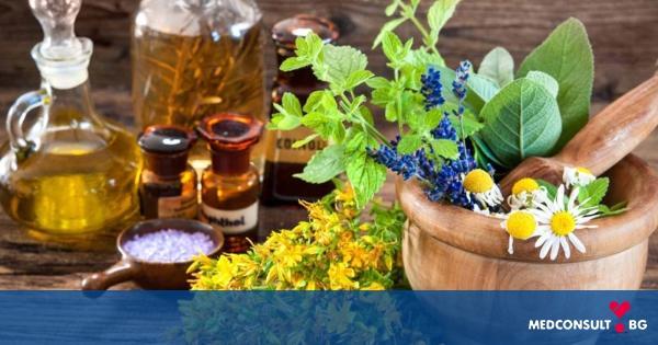 Полезни свойства на билките, за които трябва да знаете